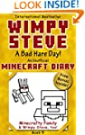 Minecraft Diary: Wimpy Steve Book 5:...