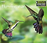 2013 Hummingbirds Wall  Calendar