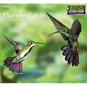 51fgMG0SG8L. SL500 AA300  Hummingbird Calendar 