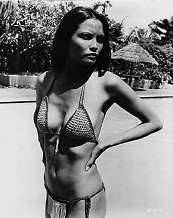 LAURA GEMSER SEXY BUSTY HOT 8X10 PHOTO #D5639 at Amazon's