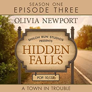 Hidden Falls: A Town in Trouble Hörbuch