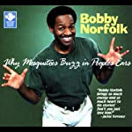 Why Mosquitoes Buzz in People's Ears   Bobby Norfolk