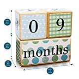 LovelySprouts Milestone Age Blocks | Solid Wood | Baby Age Photo Blocks | Perfect Baby Shower Gift, Neutral