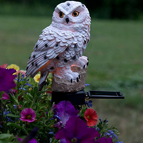 Evelots White Owl Solar Led Lawn Garden Light Keep