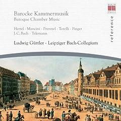Hertel, Mancini, Prentzel, Torelli, Finger, J.C. Bach & Telemann: Baroque Chamber Music