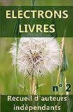 Electrons livres n� 2: Recueil d'oeuvres d'auteurs ind�pendants (2�me recueil).