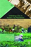 img - for Unfolding Crisis in Assam's Tea Plantations: Employment and Occupational Mobility (Transition in Northeastern India) book / textbook / text book