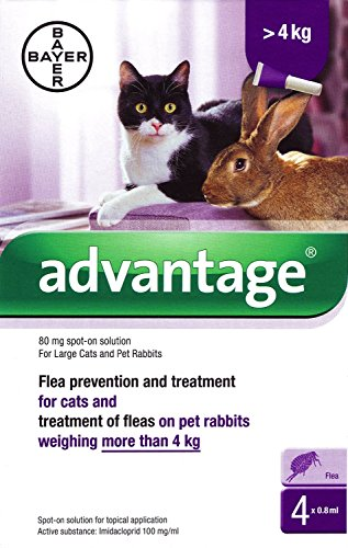 2x-advantage-80mg-spot-on-solution-for-large-cats-and-pet-rabbits-over-4kg