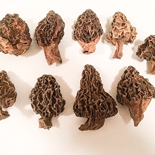 how to cook dried morels