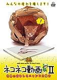 ネコネコ動画II~世界のおもしろニャンコ大集合~ [DVD]