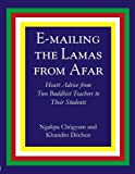 img - for E-Mailing the Lamas From Afar book / textbook / text book