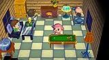 echange, troc Animal Crossing: Let's go to the City inkl. Wii Speak [import allemand]