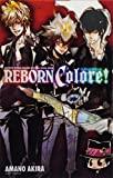 Reborn Colore: Katei Kyōshi Hittoman Reborn Kōshiki Bijuaru Bukku
