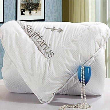 Lanmei Comforter Winter Quilt Keep Warm Thickening Cotton Quilts with Sagittarius Pattern