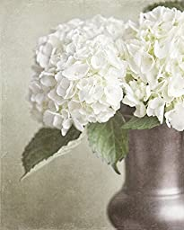 Flower Photography - \'Rustic Hydrangea\' - French Country Decor, Shabby Chic Home Decor in Beige Green Ivory Cream.