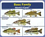 Bass Family Ident-I-Card - Freshwater Fish Identification Card