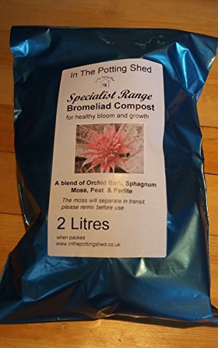 bromeliad-compost-2-litres