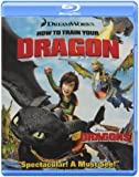 How to Train Your Dragon [Blu-ray] (Bilingual)
