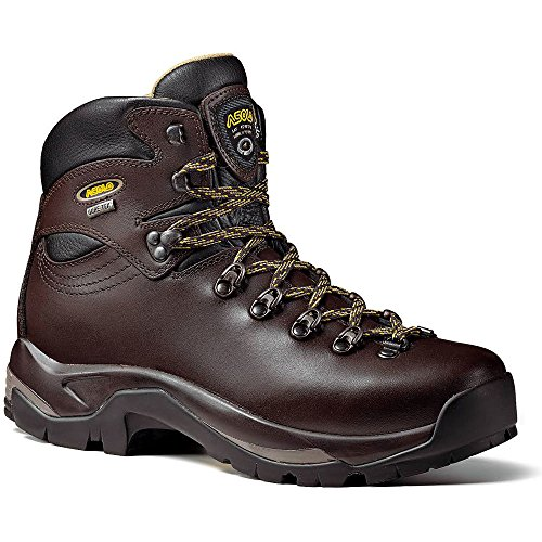 Asolo Women's TPS 520 GV Hiking Boots - Chestnut