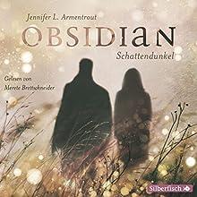 Schattendunkel (Obsidian 1) (       ungekürzt) von Jennifer L. Armentrout Gesprochen von: Merete Brettschneider
