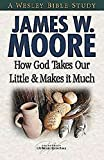 How God Takes Our Little & Makes it Much (Wesley Bible Studies)