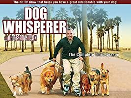 Dog Whisperer Season 3