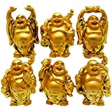 Ankita Gemstones Set Of 6 Pcs Laughing Buddha - Feng Shui Vastu For Office
