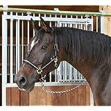 Kerbl Halfter Mustang 2-Fach verstellbar, Schwarz/Silber, 1, 321960