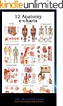 12 Anatomy e-charts: Full ilustrated