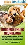 Hundeerziehung Grundlagen: Alles, was...