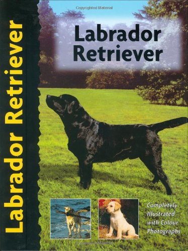 Labrador Retriever (Pet Love)