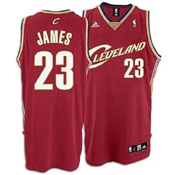 Reebok Cleveland Cavaliers Lebron James Swingman Road Jersey Red by Reebok