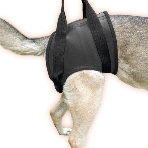 16NEO-HS-L-Julius-K-9-Gehhilfegeschirr-fr-Hinten-Gre-L-SCHWARZ-Hundegeschirr-fr-behinderte-Hunde-K9-Hebehilfe-Tragehilfe-Gehhilfe-Geschirr