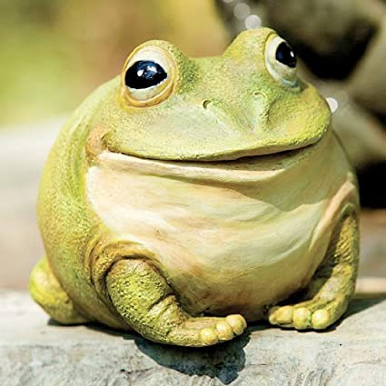Evergreen Enterprises Garden Decor Medium Portly Frog