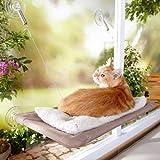 光に包まれたヅラ猫はまるで天使のようだった…が!