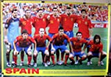 Spain soccer team slick POSTER 34 x 23.5 2010 World Cup football champs Spanish Xavi Xabi Alonso Iniesta Puyol Pique David Villa (poster sent from USA in PVC pipe)