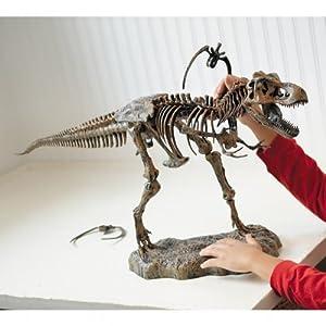 3' Ultimate T-Rex Skeleton Model
