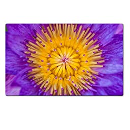 Liili Large Table Mat 28.4 x 17.7 x 0.2 inches Beautiful purple lotus closeup with beautiful yellow pollen or carpel Thailand 29076697