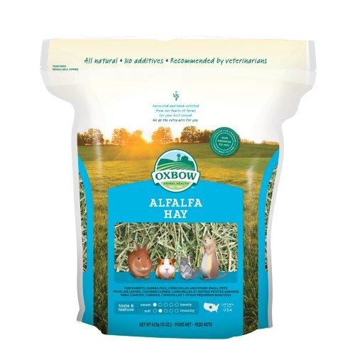 Oxbow Alfalfa Hay 425 gr - Erba medica leguminosa fresca di fattoria, fieno indicato per gli animali in giovane età, femmine gravide e in allattamento (1 sacchetto)