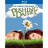 Pushing Daisies: Season 1  [Blu-ray] ~ Lee Pace