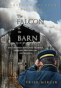 The Falcon In The Barn by Trish Mercer ebook deal