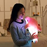 Colorful Led Light Dolphin Stuffed Animal Toy 17.7 Inch (Pink)