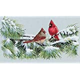 Dimensions Needlecrafts Counted Cross Stitch, Winter Cardinals