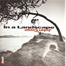 In a Landscape: Piano Music of John Cage