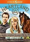 Heartland: Complete Fifth Season