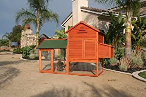 Raised Wooden Chicken Coop