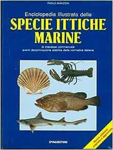 Enciclopedia illustrata delle specie ittiche marine: Di interesse