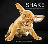 Shake Wall Calendar (2015): Photography by Carli Davidson