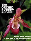 Dr D G Hessayon The Orchid Expert: Name that orchid - and get it to flower again