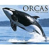 Orcas 2009 Calendar
